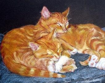 Custom Pet Portrait, Cats Sleeping Drawing