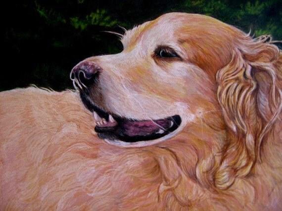 "Dog Portrait Drawing, Custom, 11"" x 14"""