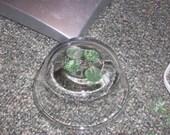 Green Leaf Beads PIF