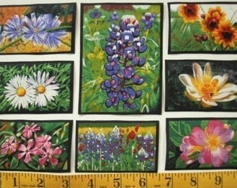 WILDFLOWERS Flowers Vanderpool 35 Fabric Appliques State Art RARE