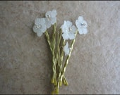 Hair pins- Bobby Pins - White Flowers Set of 6 - BHV -