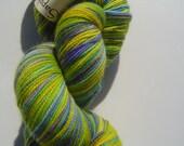 SARAMAY Handpainted Treadsoft Superwash Sock Yarn