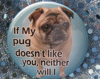 if my fawn pug doesnt like you...neither will i badge