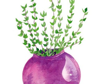 SALE Thyme Original Watercolor Botanical Painting Kitchen Wall Artwork