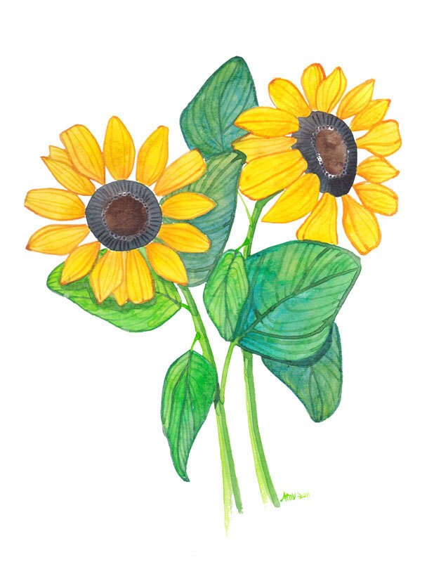 Original Painting Watercolor Sunflowers Original Floral Watercolor Painting