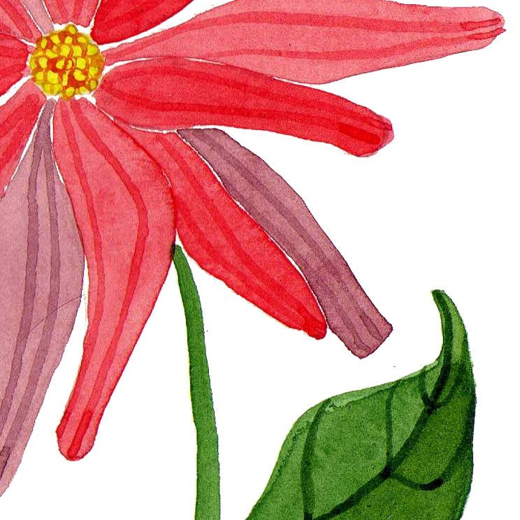 He Loves Me Watercolour Floral Art Print Watercolour Painting Reproduction Botany Wall Art