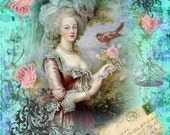 Marie Antoinette Designer Fabric Block The Birds 5 x 7