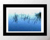Reserved for Shannon- Dancing Leaves of grass on still Pond photo 8 x 10 in
