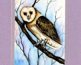Wonderful Barn Owl Print from an original Watercolor