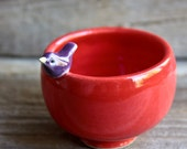 Sweet Little Purple Bird on a Red Bowl