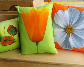 California Poppy 12 by 16 Pillow Cover series F