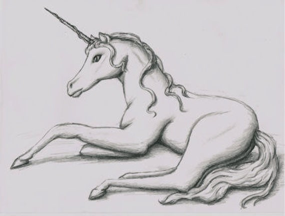 Items similar to unicorn original pencil drawing on etsy