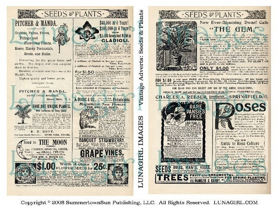 Vintage Ads SEEDS PLANTS digital collage sheet DOWNLOAD Victorian advertising images flowers gardening altered art ephemera text antique
