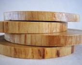 Pine Coasters- Set of 4