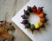 rusted rainbow -  felted wool acorns - set of 12