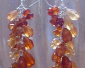 Phoenix Earrings