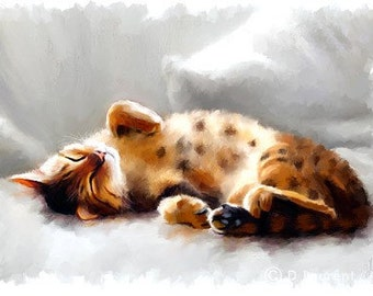 Bengal Cat Print - All Curled Up - Limited Edition Kitty Art Print