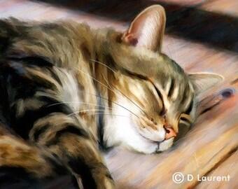 Tabby Cat Print - Hot Spot - Limited Edion Art Print