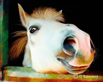 Billy - Horse Pony Fine Art Limited Edition Print - Free Shipping