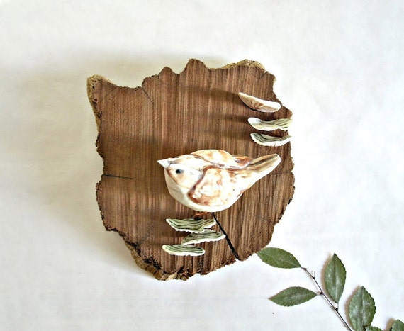 Woodland Wren, Shelf Mushrooms and Cedar, Wall Art for Your Home