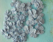 36 Royal Icing Hydrangea Blossoms