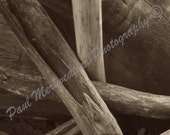Driftwood Water Logs (Free Shipping)
