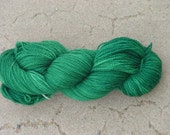 Doublemint Hand Painted Soft Superwash Merino Yarn