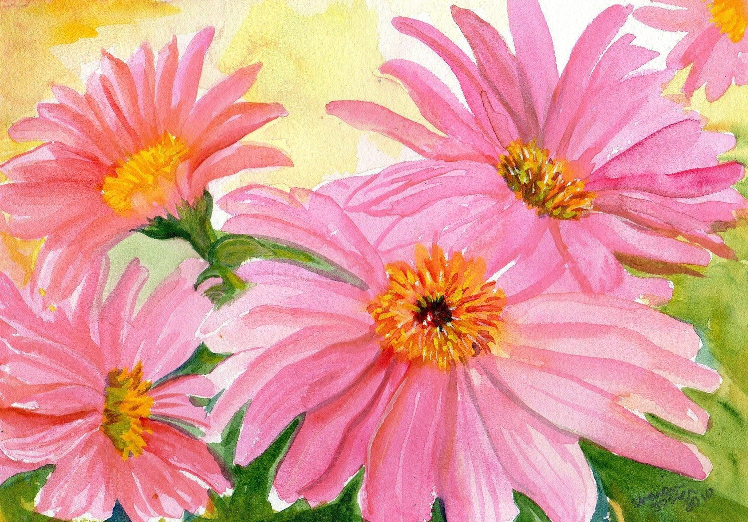original watercolor painting of pink gerbera daisies