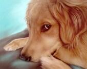 Custom Pet Portrait, Realistic Pet art, Hand Painted, Lifelike artwork, Digital  Pet Painting, on paper, Dog Portrait, Best Pet Memorial