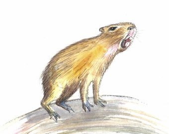 Capybara Art, watercolor painting, original artwork, ground hog art, Nursery Decor ,Home Decor, 5 x 7 inch, King of the Hill