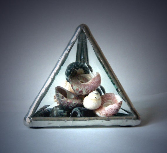 Beveled Glass Paperweight With Seashells