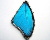 Large Blue Morpho Butterfly Necklace - Real Wings