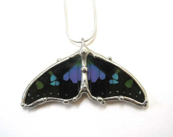 Double Wing Graphium Butterfly Necklace
