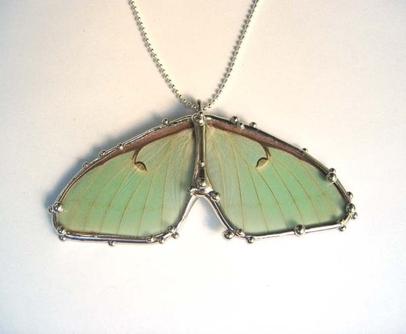 Luna Moth Double Wing Necklace