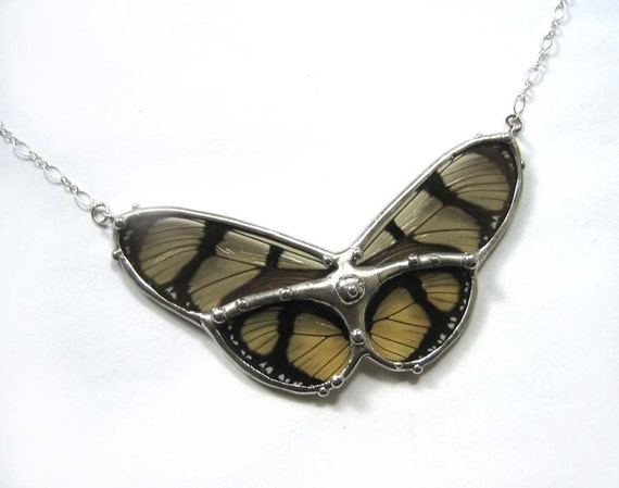 Butterfly Statement Necklace - Real Butterfly Jewelry - Beautiful Transparent Wings