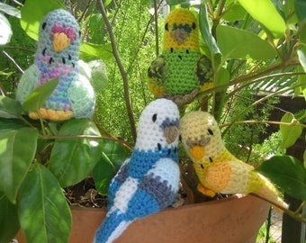 Budgerigars (budgie crochet pattern) Australian Native Birds