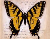Swallowtail Butterfly Original Painting