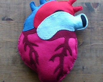 Anatomical Heart Plush LARGE made to order