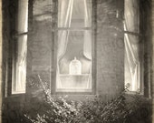 BIRDCAGE Black and White Digital Photograph Print 10 x 14