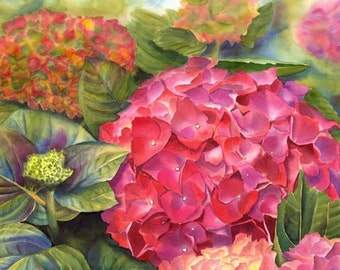 Hydrangea Watercolor Painting Print 8x10 Joa