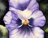 Purple Pansy - Original 5 x 7 Watercolor