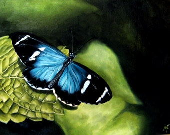 Fleeting Moment - Original Oil Butterfly Painting