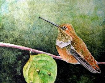 Quiet Time - Original Hummingbird Watercolor Painting