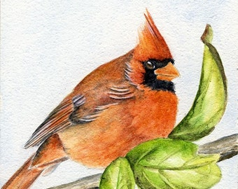 Red and Green, Original 4 x 4 Watercolor