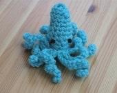 Baby Blue Squid
