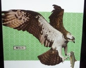 "Card Engagement Congratulations -- Osprey says,  ""He'll Do"""