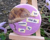 Pinback Button Badge -- Rude Birds -- You stink like weenies and cake