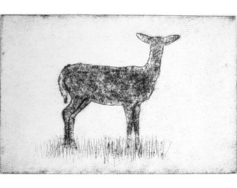 Etching Deer original hand pulled print