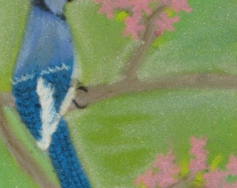 Bluejay pastel painting
