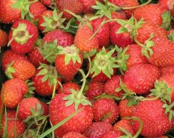 Strawberries, photograph